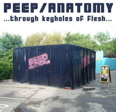 Peep Anatomy