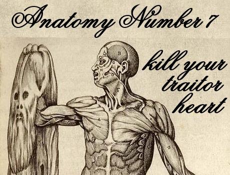 anatomy7