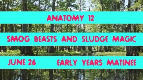 anatomy12-b
